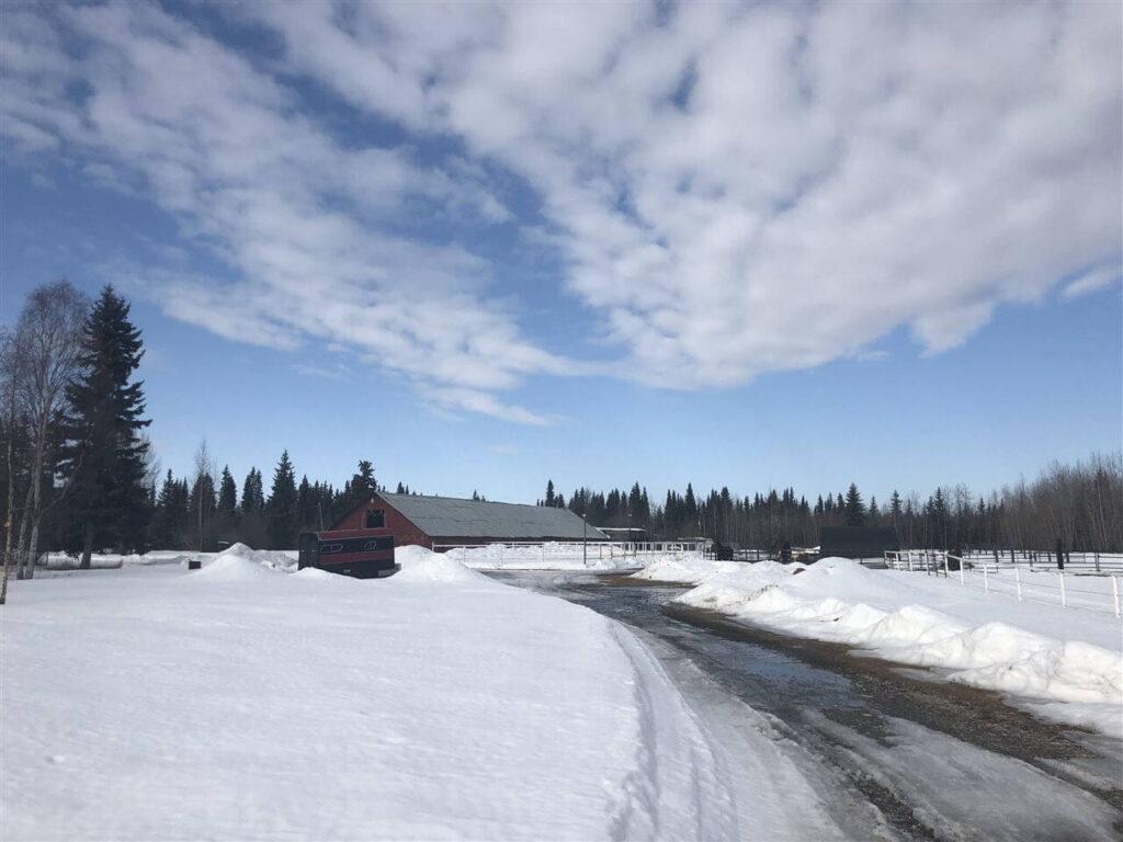LSS Alaska - Badger-AK